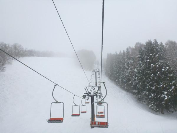Nozawa Snow Report - 23 January 2015
